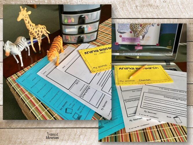 Animal Research Skills for Kindergarten and First Grade